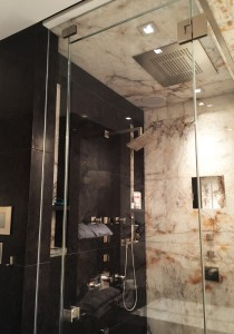Ultra-Clear Glass Shower Door